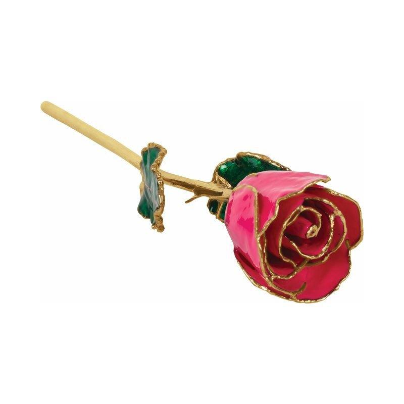 Calvin Broyles Magenta Gold Dipped Rose