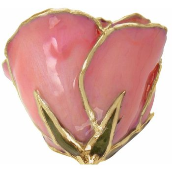 Pink Pearl Gold Dipped Rose