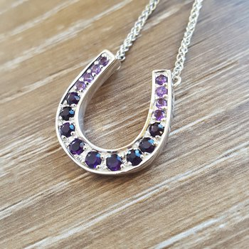 Gradient Horseshoe Necklace