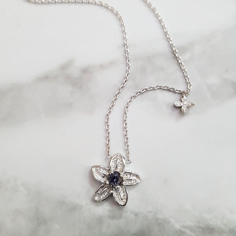 American Gem Collection™ Alpine Forget-Me-Not