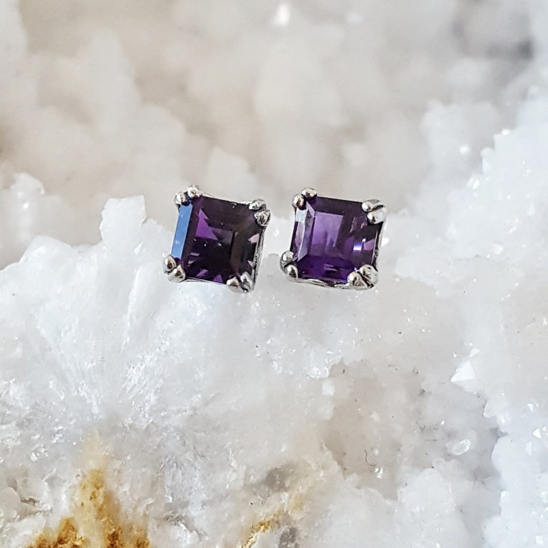 Arizona Amethyst™ Gold Jewelry Double Prong Princess Studs