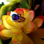 Arizona Amethyst™ Gold Jewelry Two Tone Oval Ring