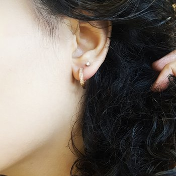Rose Gold Small Hoops