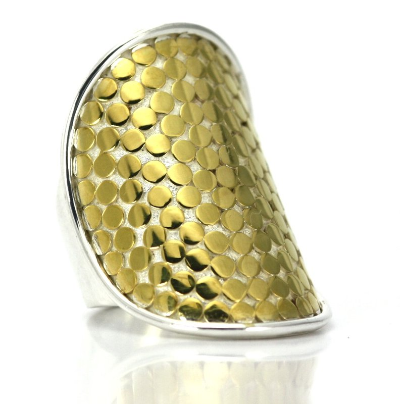 The Silver Collection Ring
