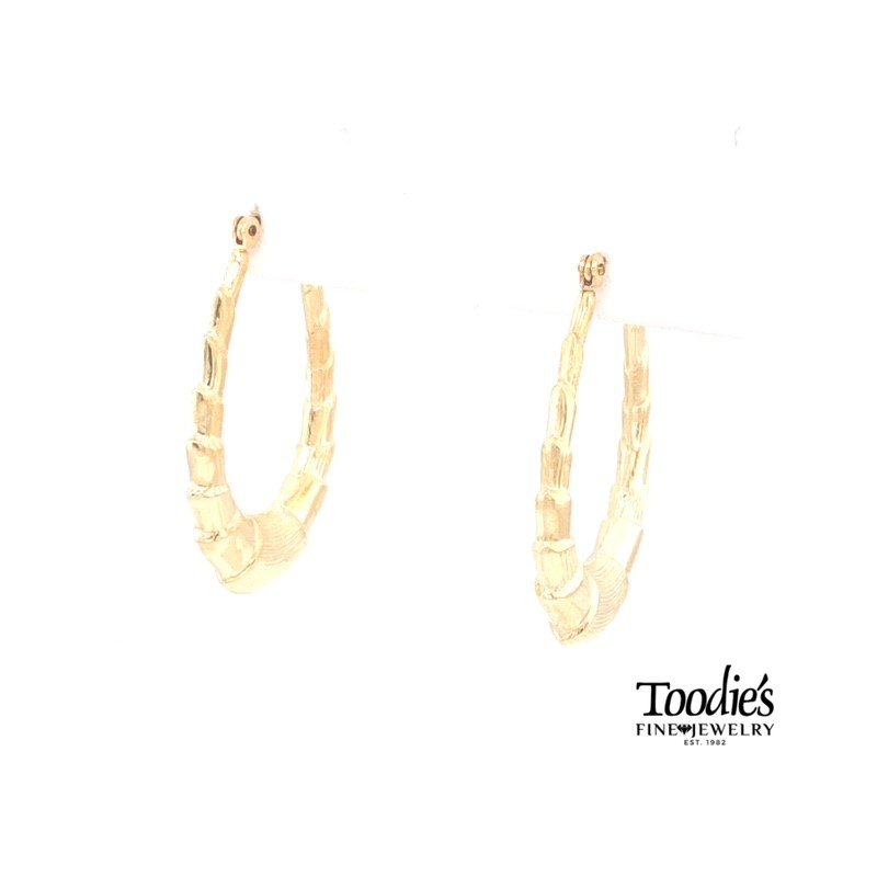 Toodie's Signature Fashion Oval Hooped Earrings