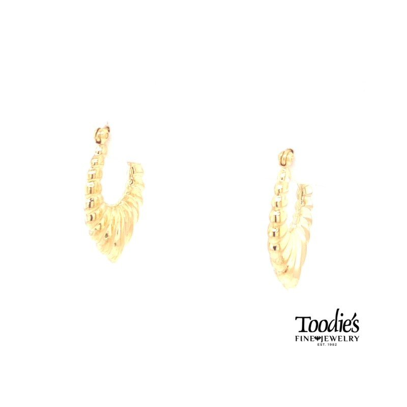 Toodie's Signature Fashion Oval Hoop Earrings