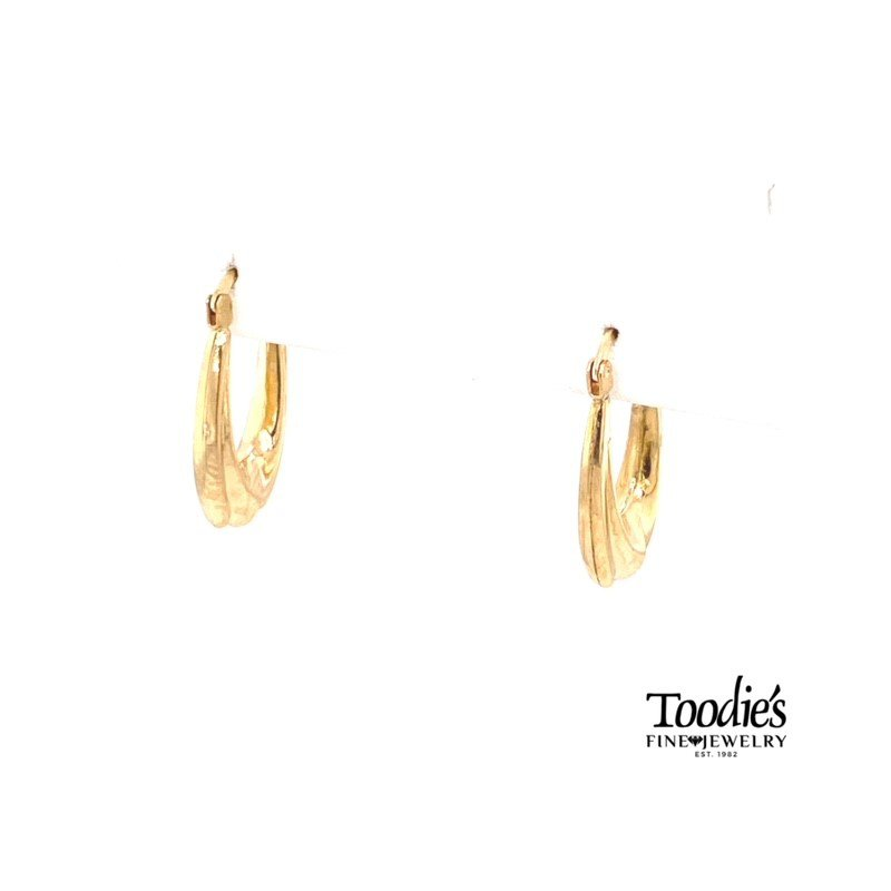 Toodie's Signature Fashion Oval Hoop Earrings