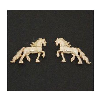 Friesian Earrings