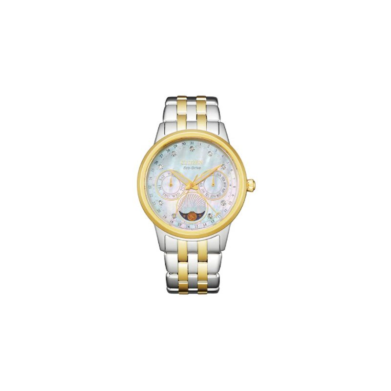Citizen Watch 500-00878
