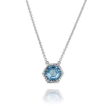 Hexagon Blue Topaz Necklace 14KW