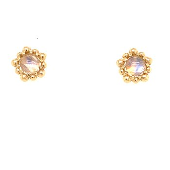 Dew Drop Moonstone Studs