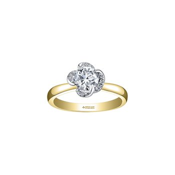 Wind's Embrace Solitaire Engagement Ring in Yellow Gold