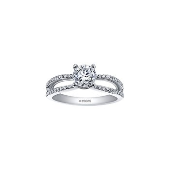 Circle of Love Diamond Set Split Band Engagement Ring