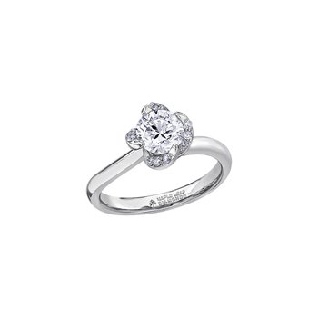 Wind's Embrace Solitaire Engagement Ring in White Gold