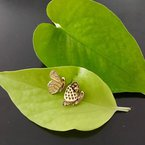 Davidson's Signature Pave Butterfly Stud Earrings