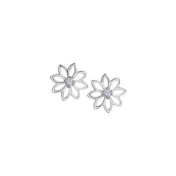 Spring Waterlily Stud Earrings