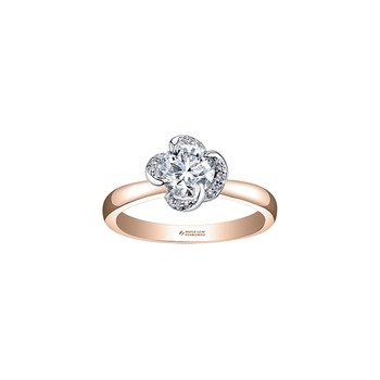 Wind's Embrace Solitaire Engagement Ring in Rose Gold