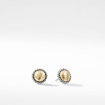 Earrings with 18K Gold