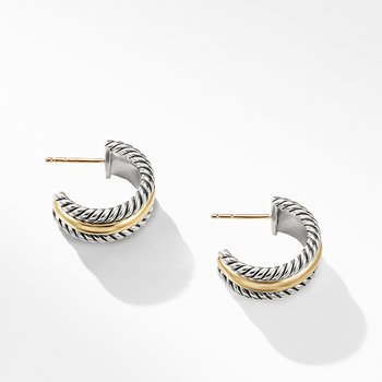 Hoop Earrings with Gold