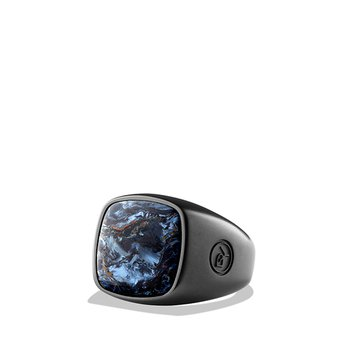 Exotic Stone Ring with Pietersite in Black Titanium