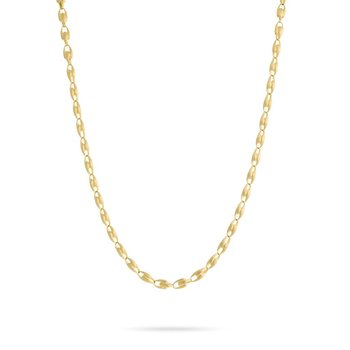 Lucia Small Link Long Necklace