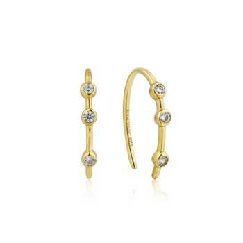 Touch Of Sparkle Hook Earring