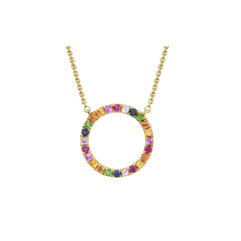 Shy 14k Yellow Gold Multi-Color Stone Circle Necklace