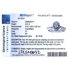 Brownlee Signature 2DLSO0032
