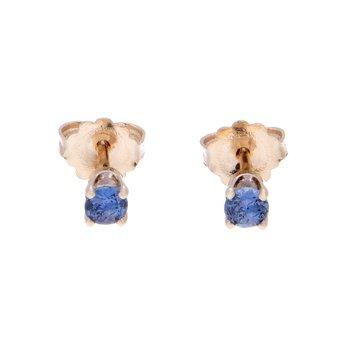 Yogo Sapphire Stud Earrings - 14ky